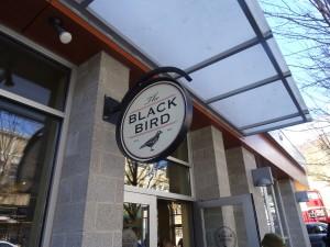 Blackbird in Asheville