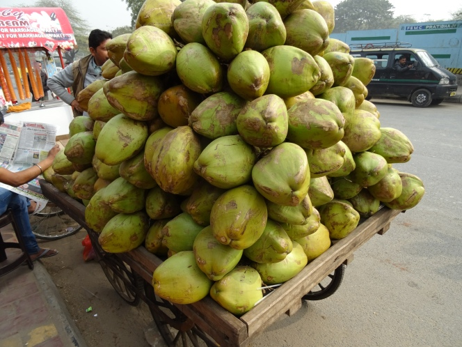 Fresh Coconuts at Lotus Temple